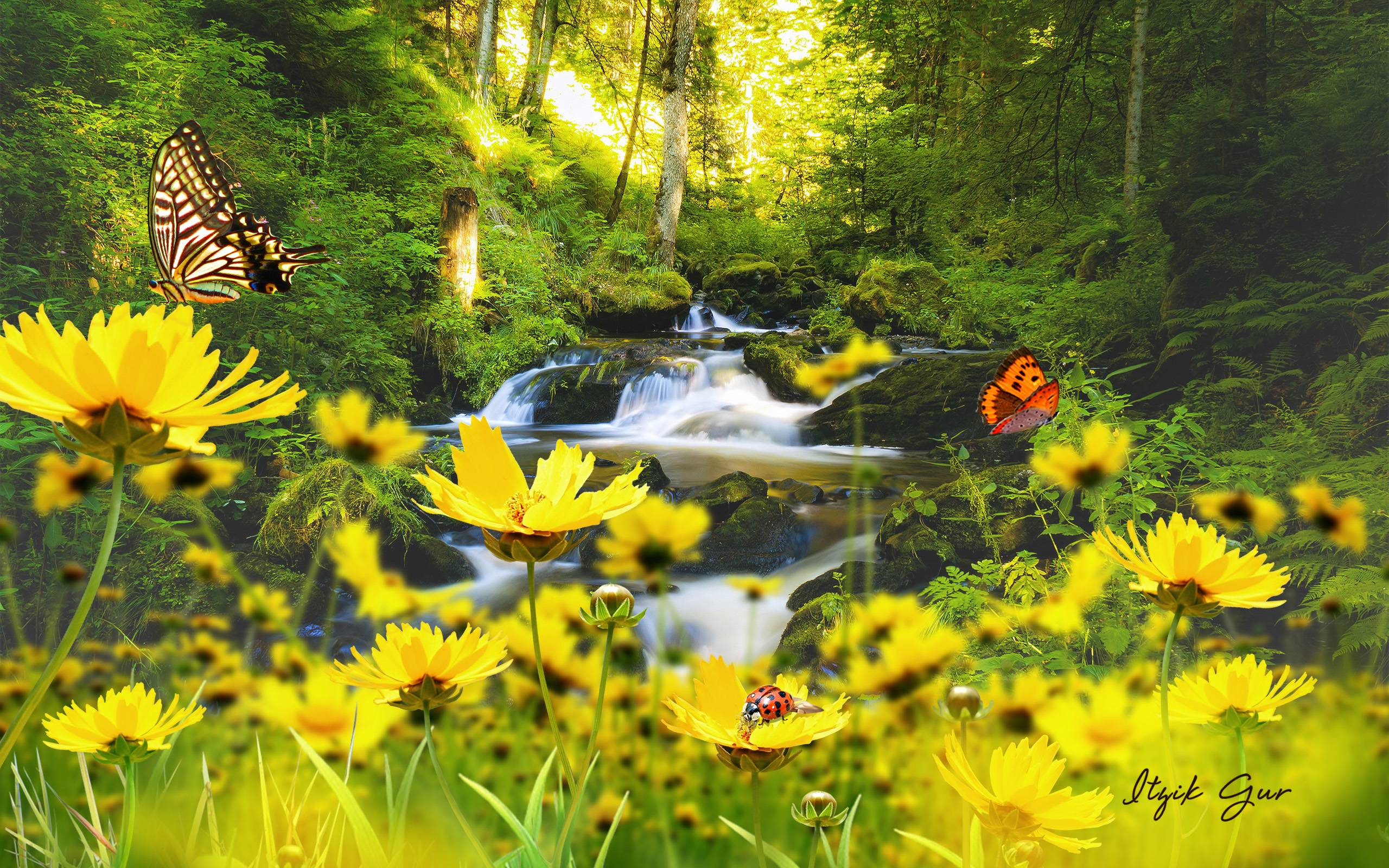 free springtime wallpapers wallpaper cave