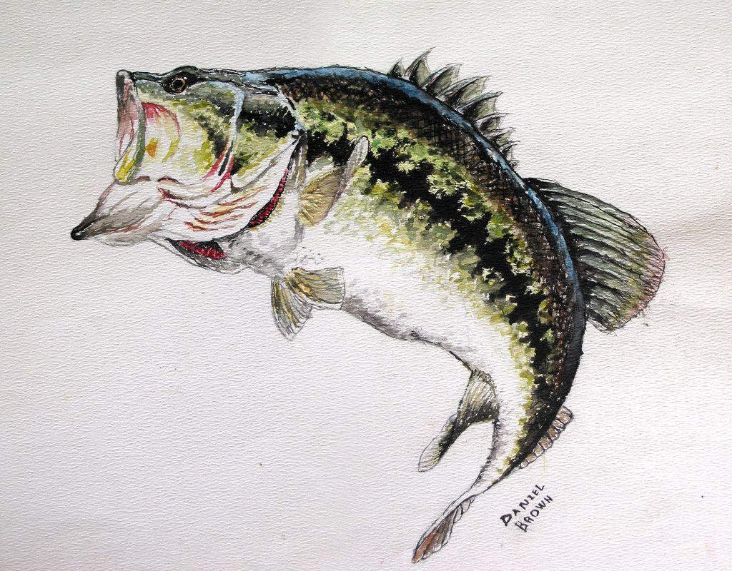 largemouth bass wallpaper - photo #14