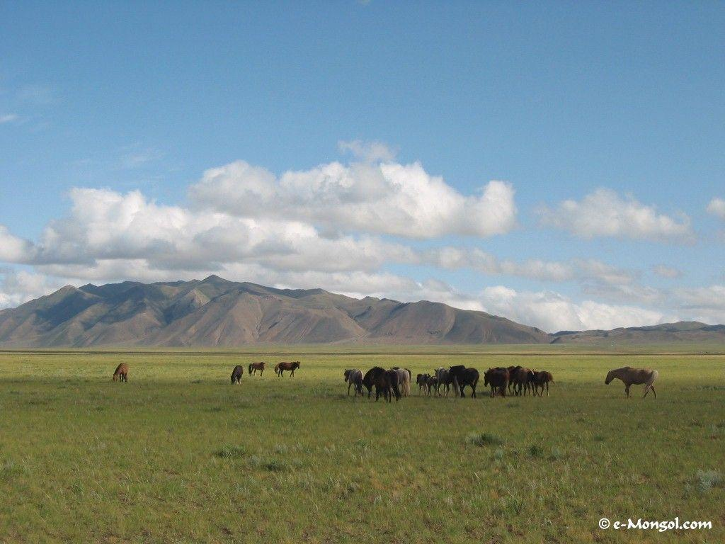 Photos of Mongolia :Wallpapers of mongolia for your computer