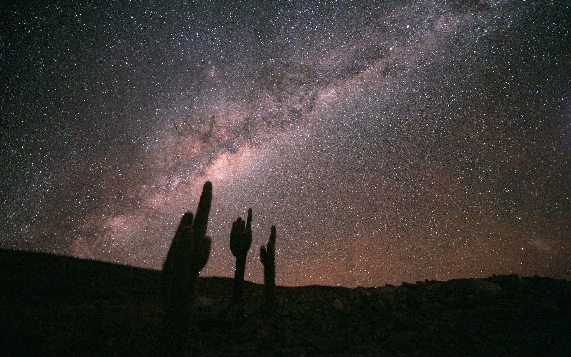 File:Echinopsis Atacamensis and the Milky Way