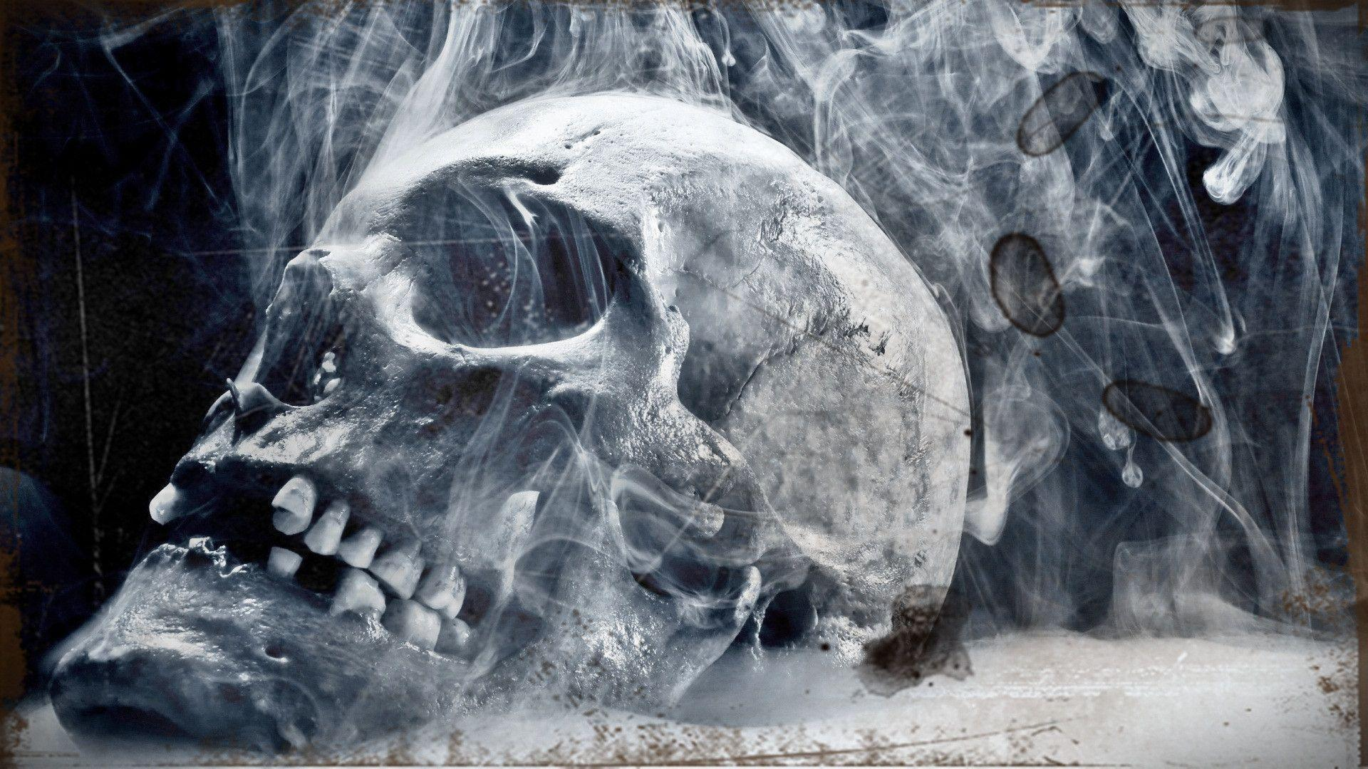 skull wallpaper wallpapers hd - photo #20