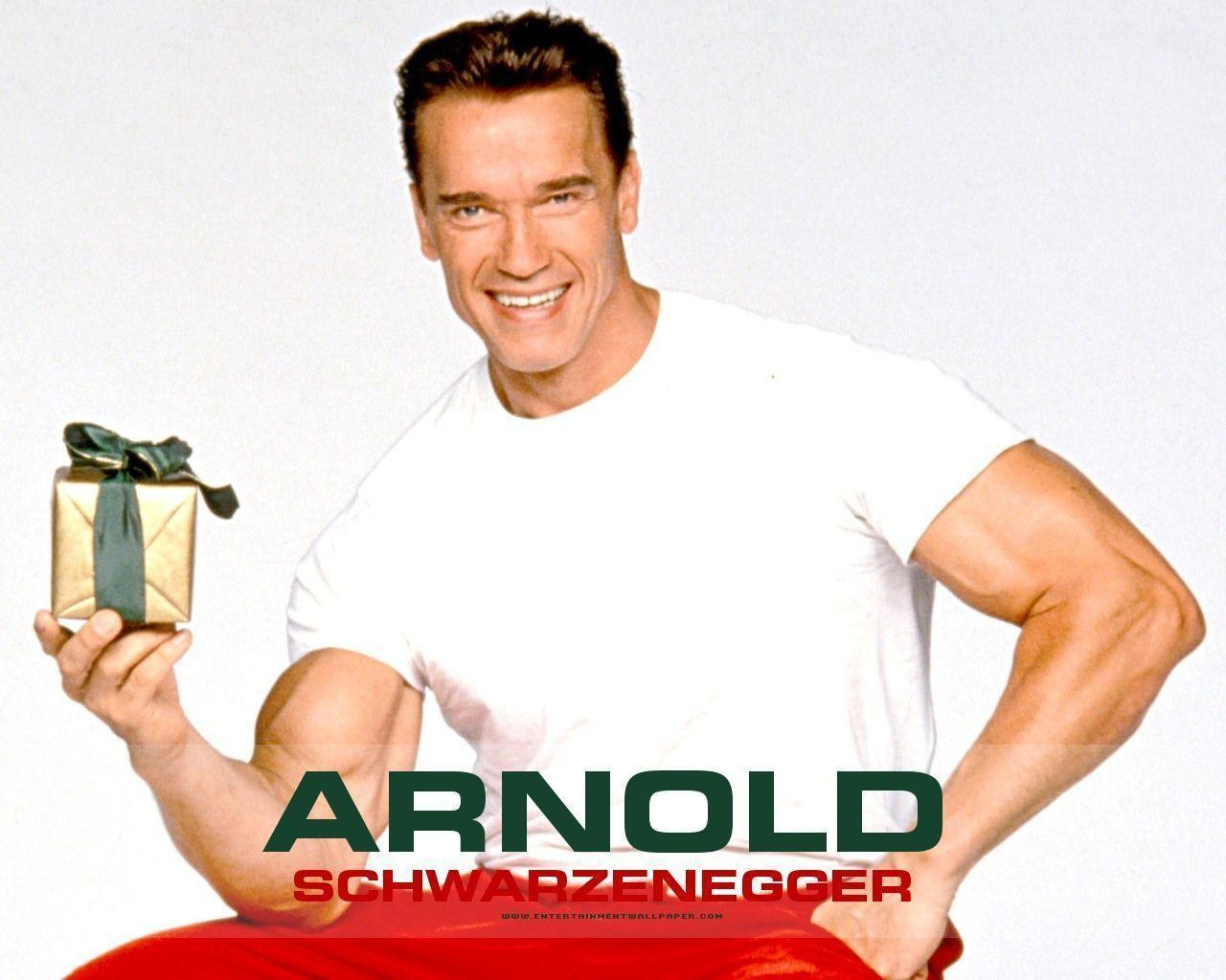 Arnold Wallpapers Wallpaper Cave