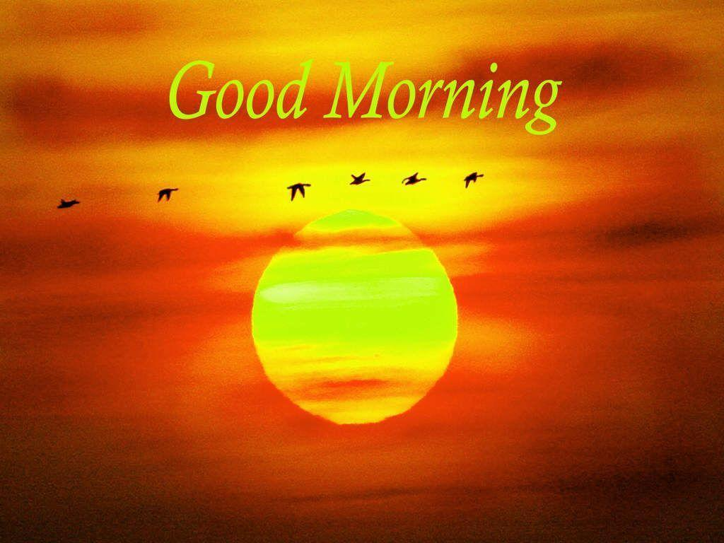 Good Morning Sunshine Download : Good morning wallpapers wallpaper cave