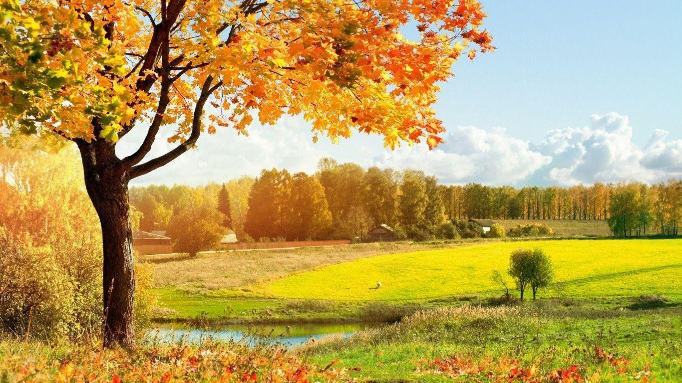 landscape autumn hd wallpaper - photo #10