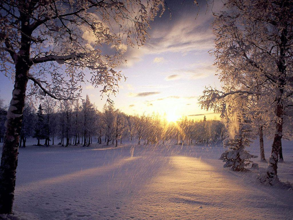 Beautiful Winter Snow 54 36344 Image HD Wallpapers