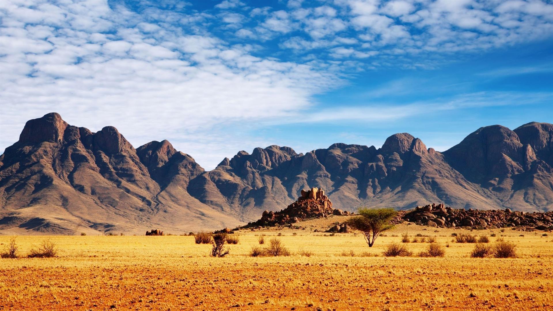 Stunning-Safari-Wallpaper.jpg