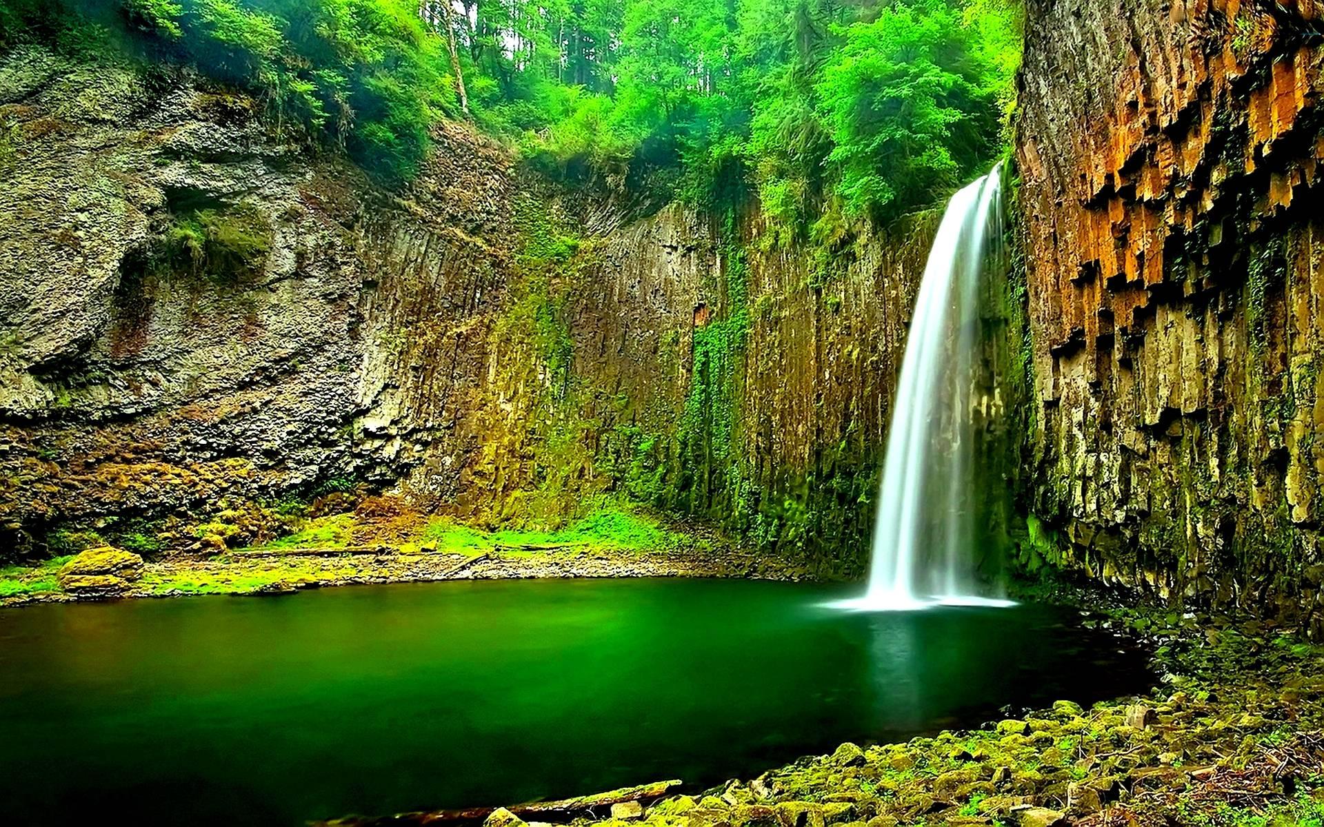Jungle Waterfall Wallpaper Hd: Jungle Wallpapers