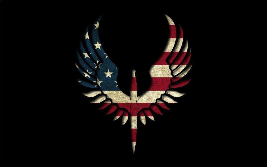 Astonishing Eagle Flag USA Wallpaper HD 1680p 2013