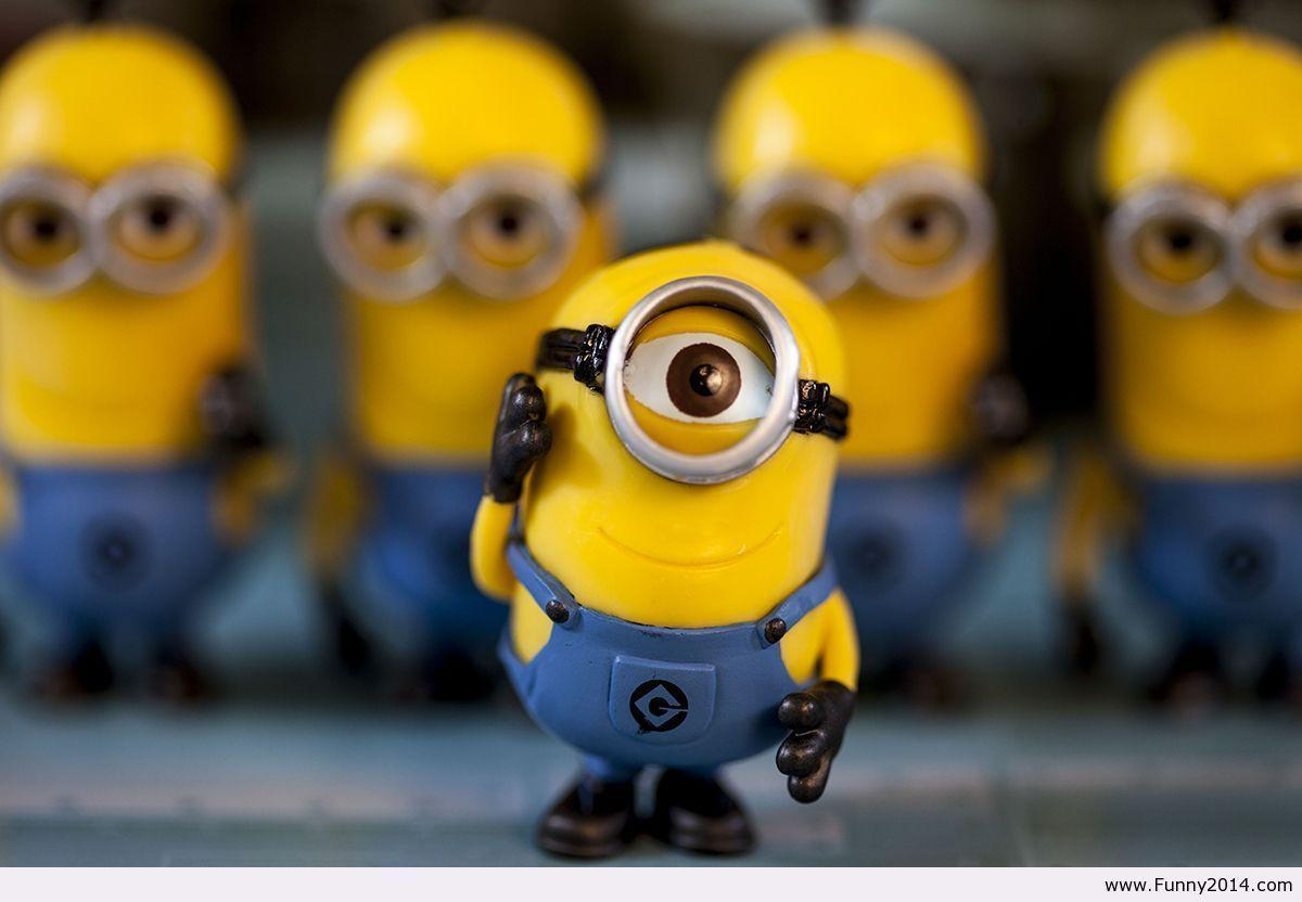 Minion Wallpapers 2014