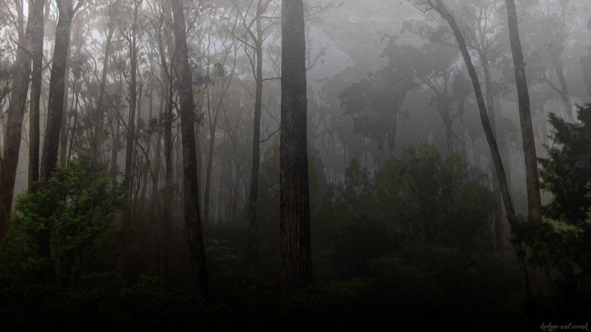 dark forest widescreen wallpaper - photo #36