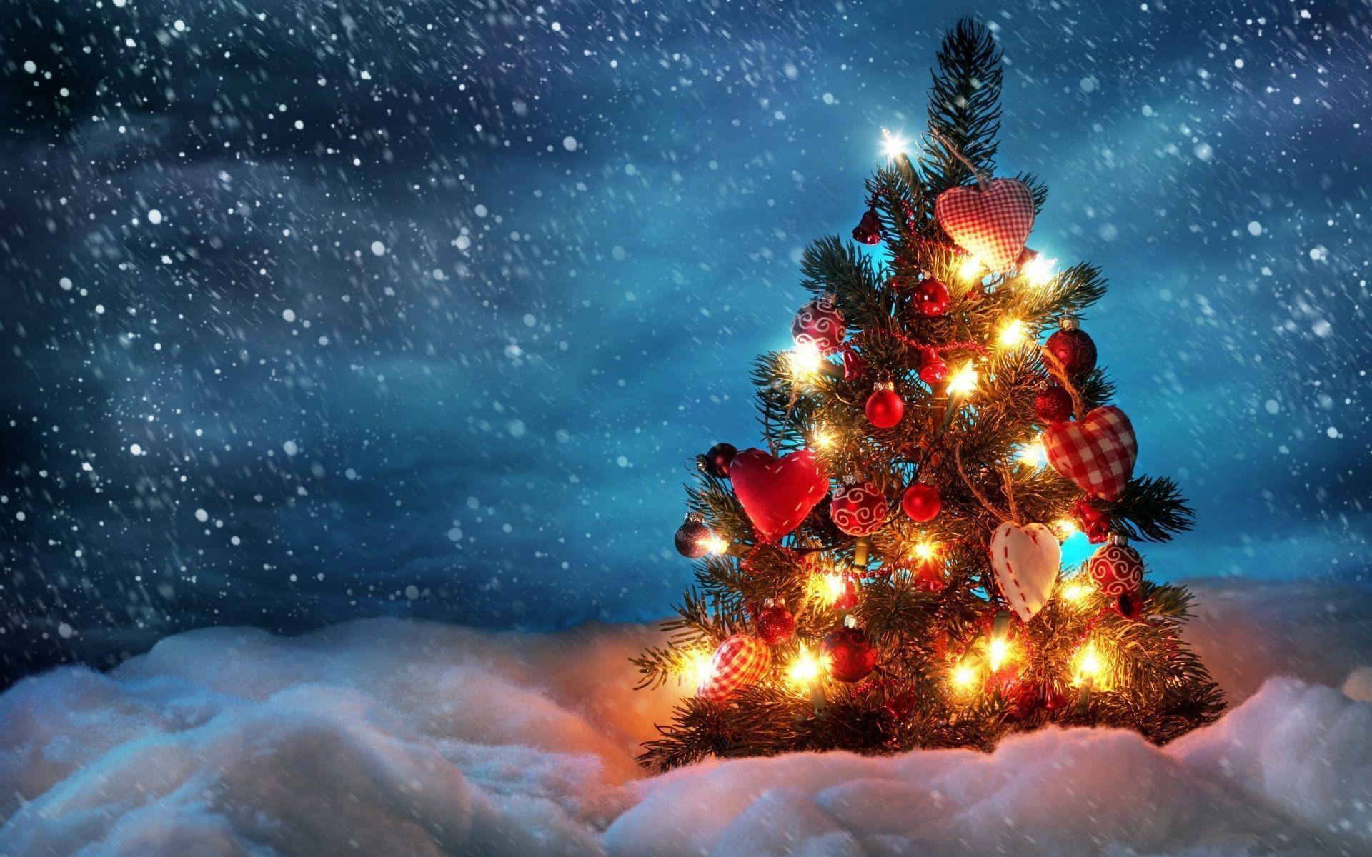 Christmas Tree Wallpapers Wallpaper Cave