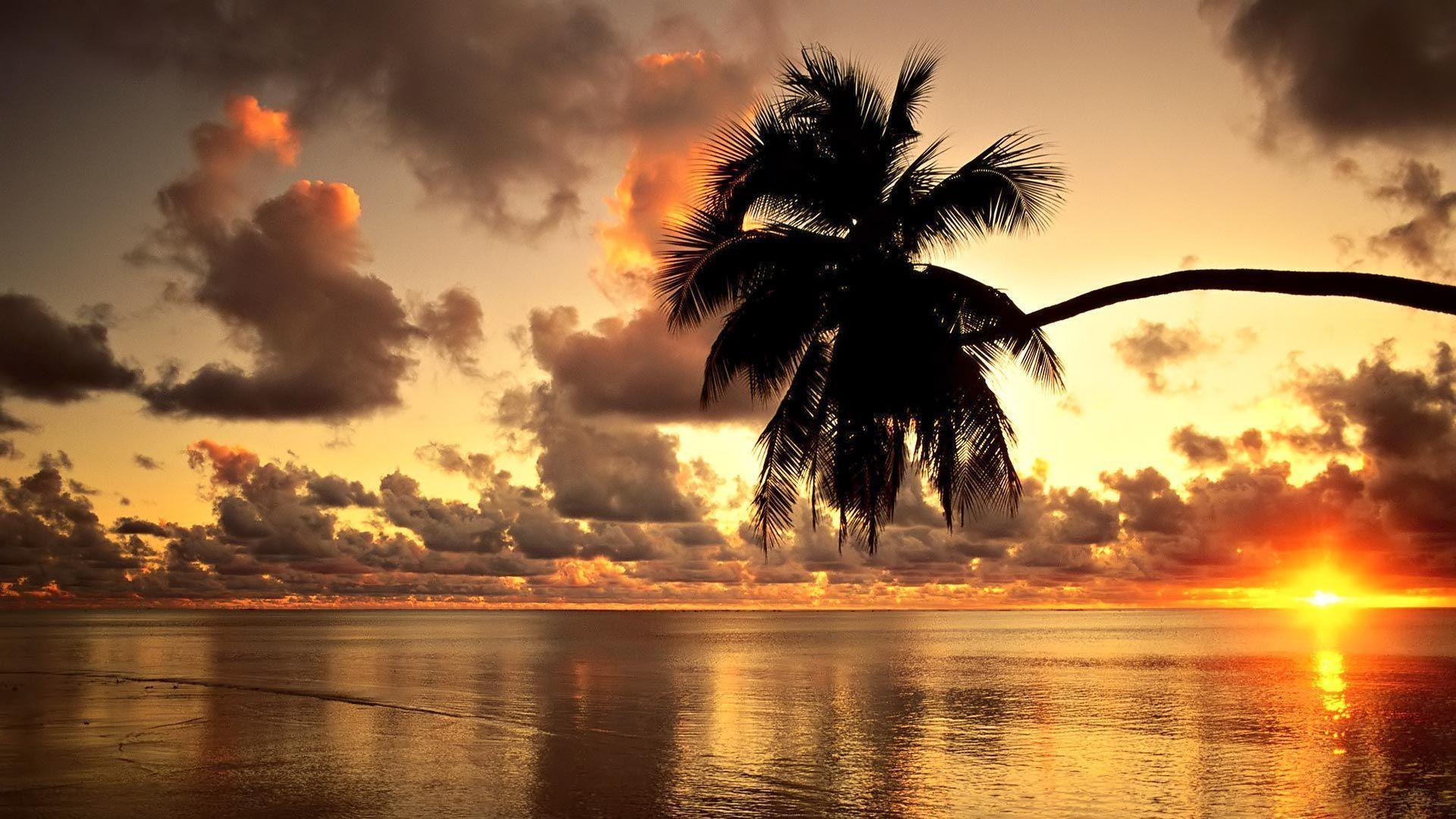 Hawaii Sunset Beach Wallpapers Free Wallpapers
