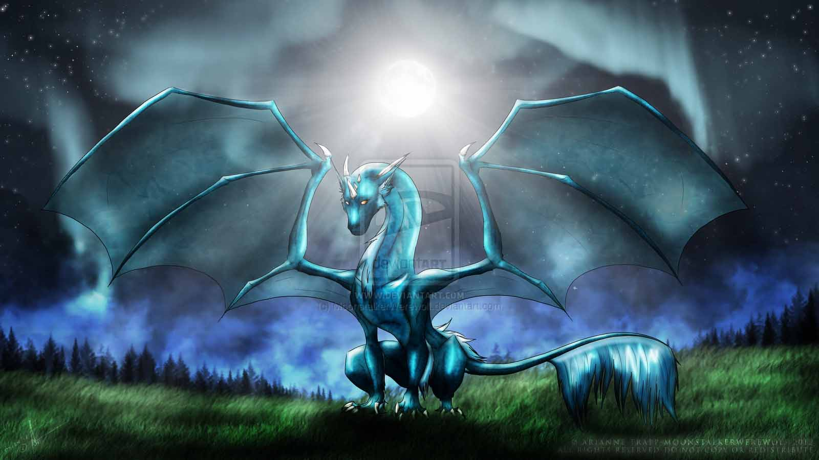 Water Dragon Wallpapers Wallpaper Cave