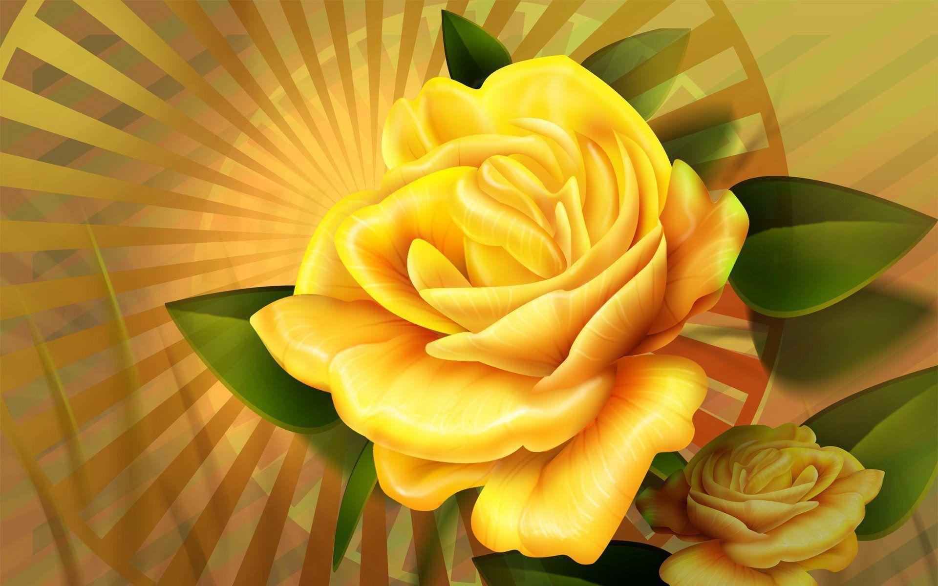 Yellow Rose Flowers Wallpapers Hd Cool 7 HD Wallpapers