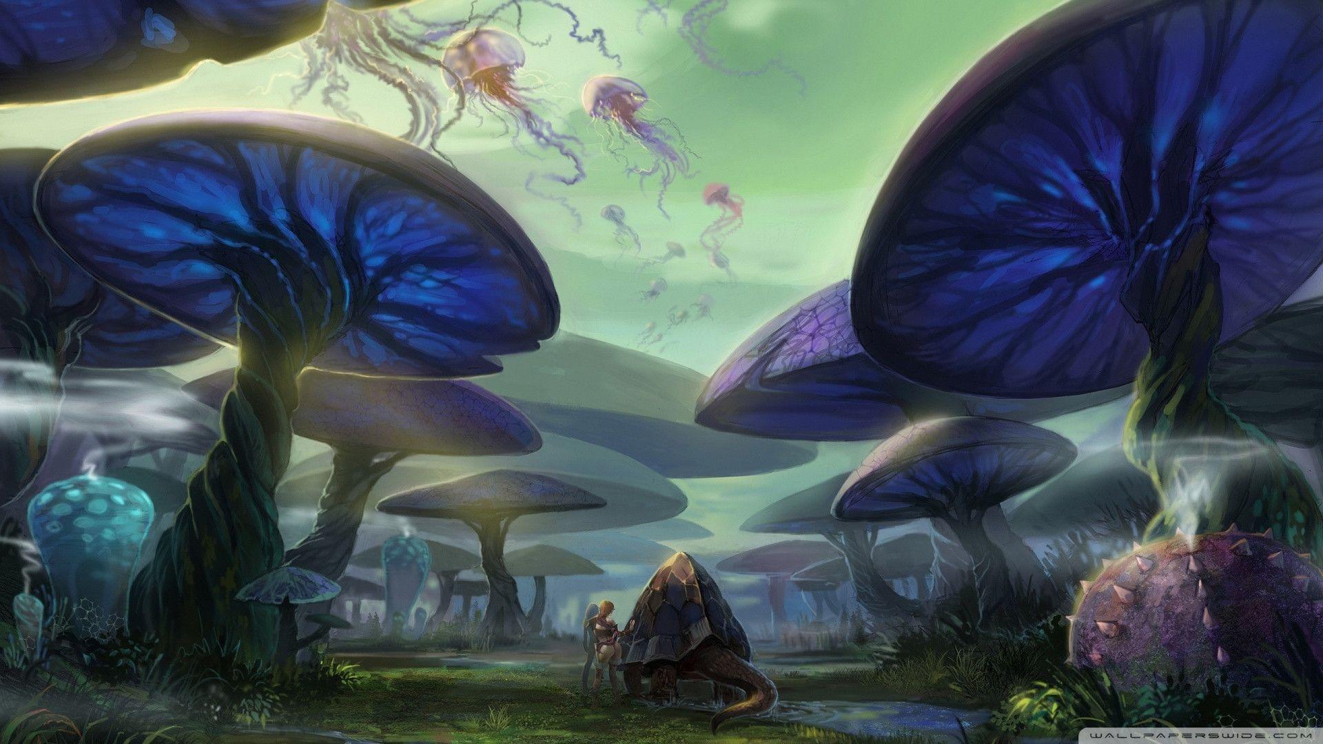 <b>wallpaper</b>: Glass <b>Mushrooms Wallpapers</b>