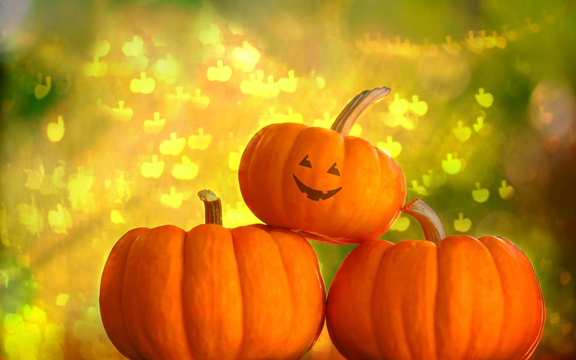Halloween Pumpkin Wallpaper Hd.Hd Pumpkin Wallpapers Wallpaper Cave