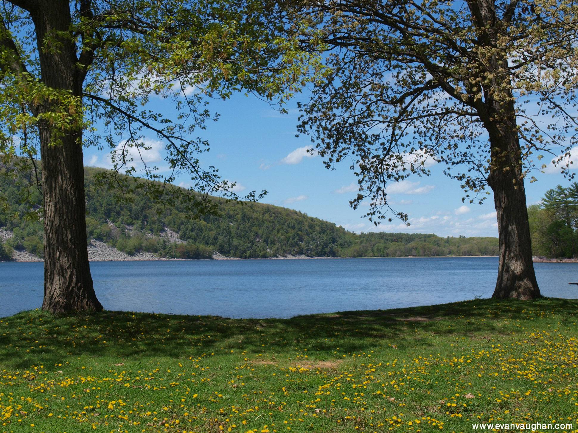 screensaver nature scenes - photo #41