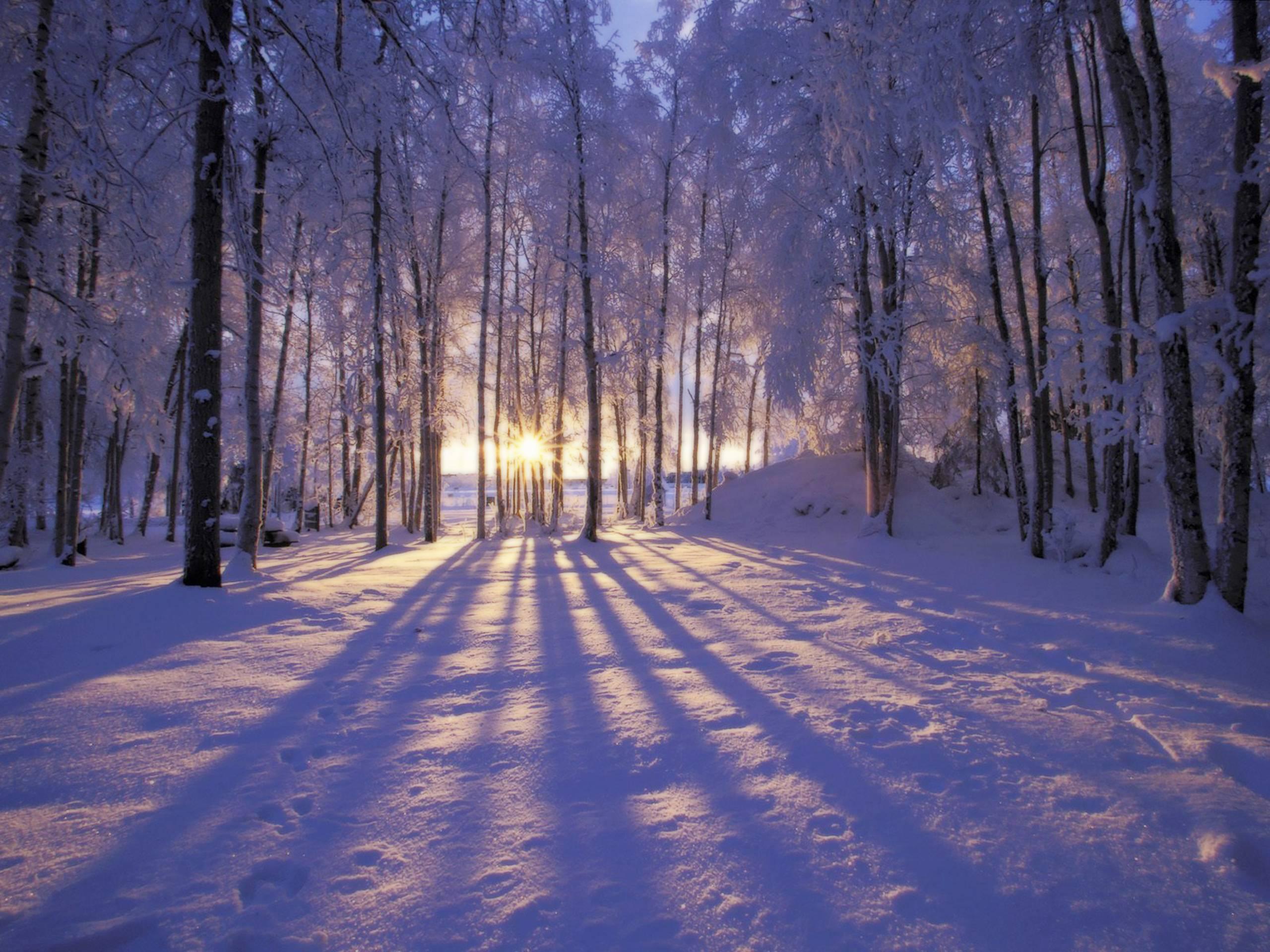 Winter Scenes Desktop Wallpapers Wallpaper Cave