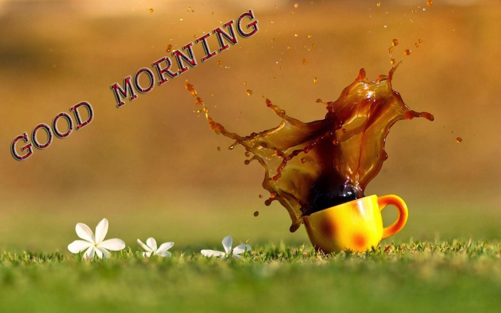 Hd wallpaper of good morning - Sms With Wallpapers Good Morning Hd Wallpapers 2014