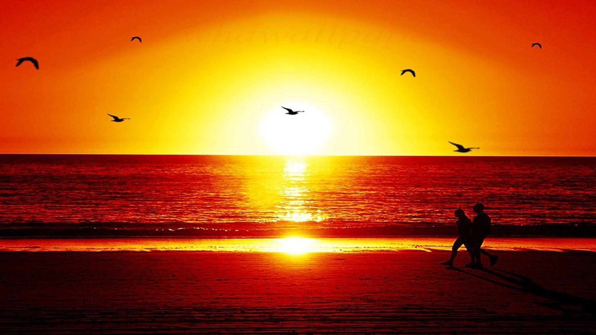 Sunset Wallpaper 51 Backgrounds | Wallruru.