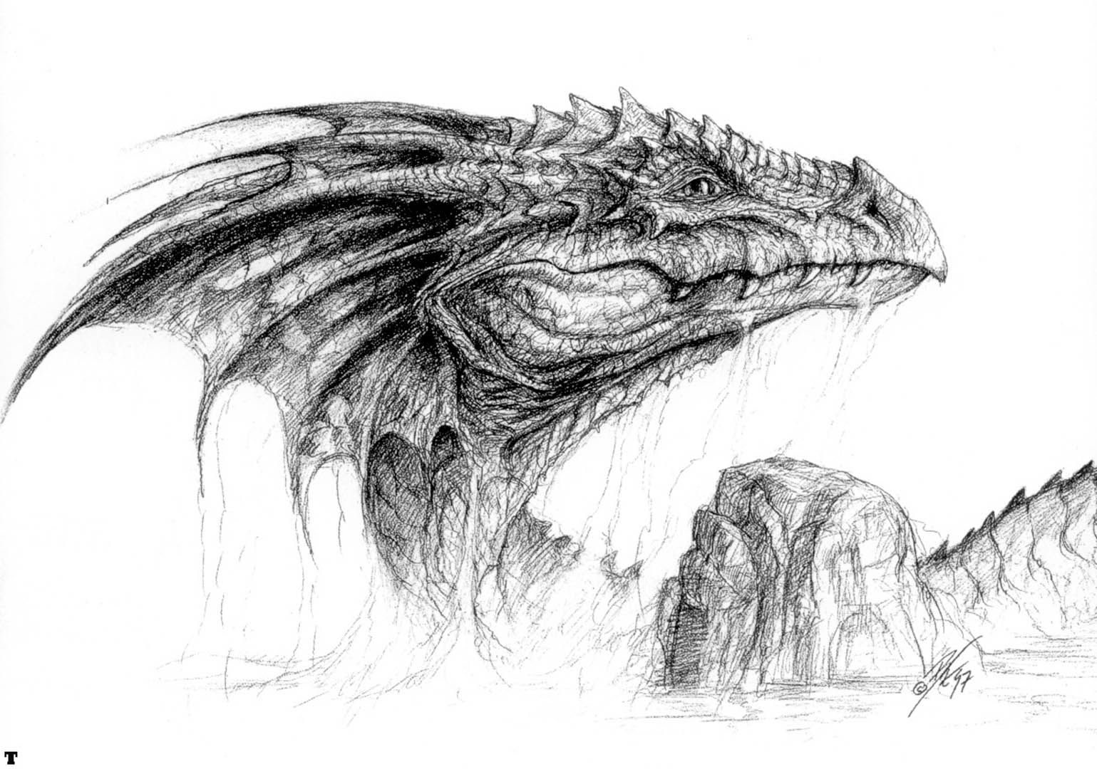 98 Sketch Wallpapers Wallpaper Cave Sketches Wallpapers: Dragon Head Wallpapers