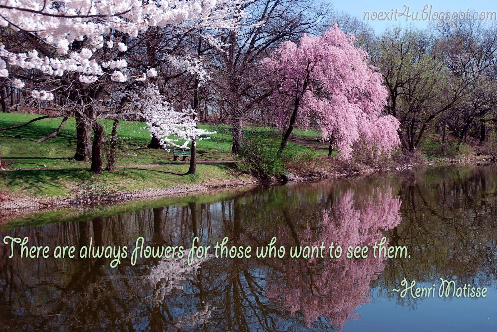 mother nature sayings wallpaper - photo #22