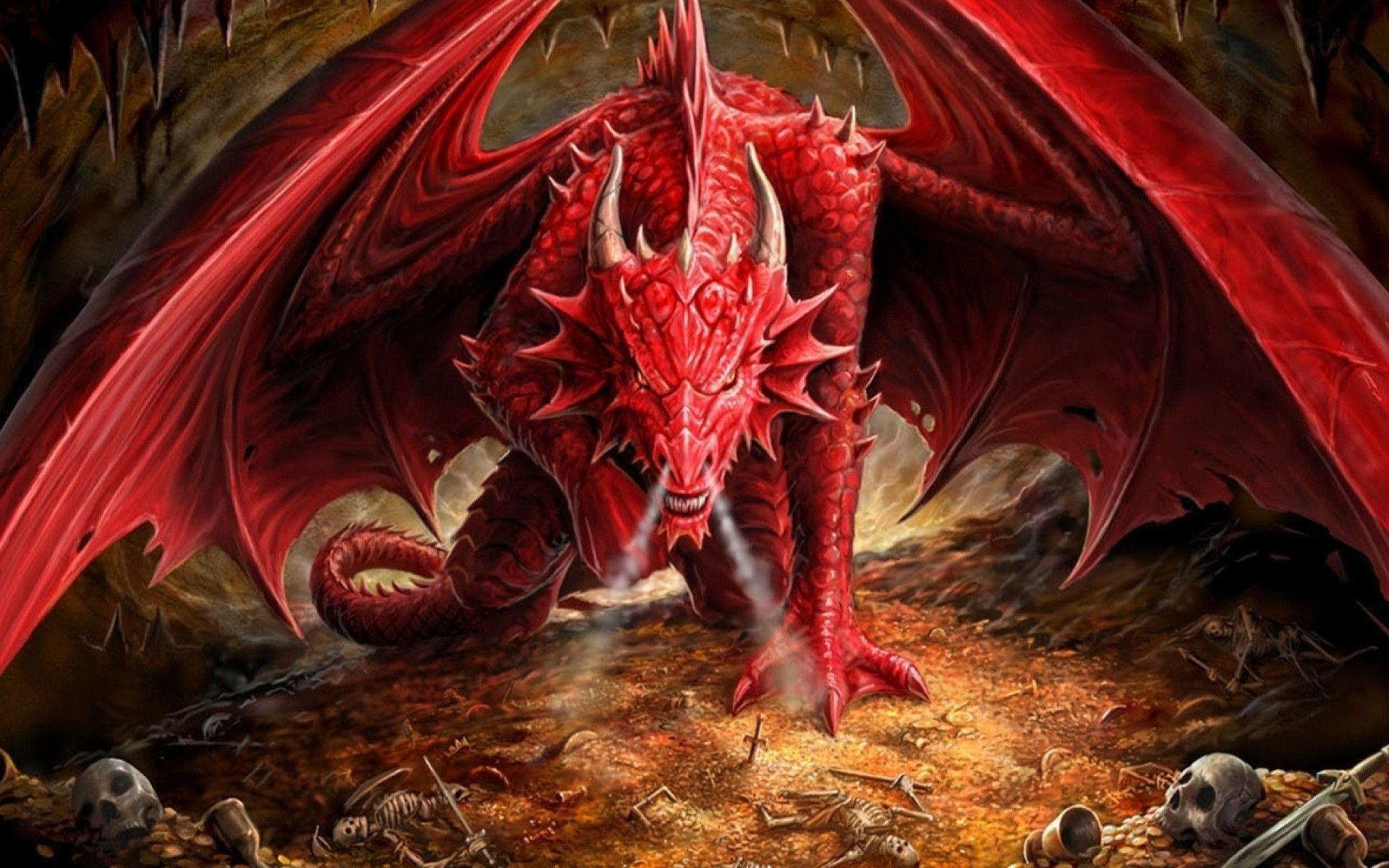 red dragob