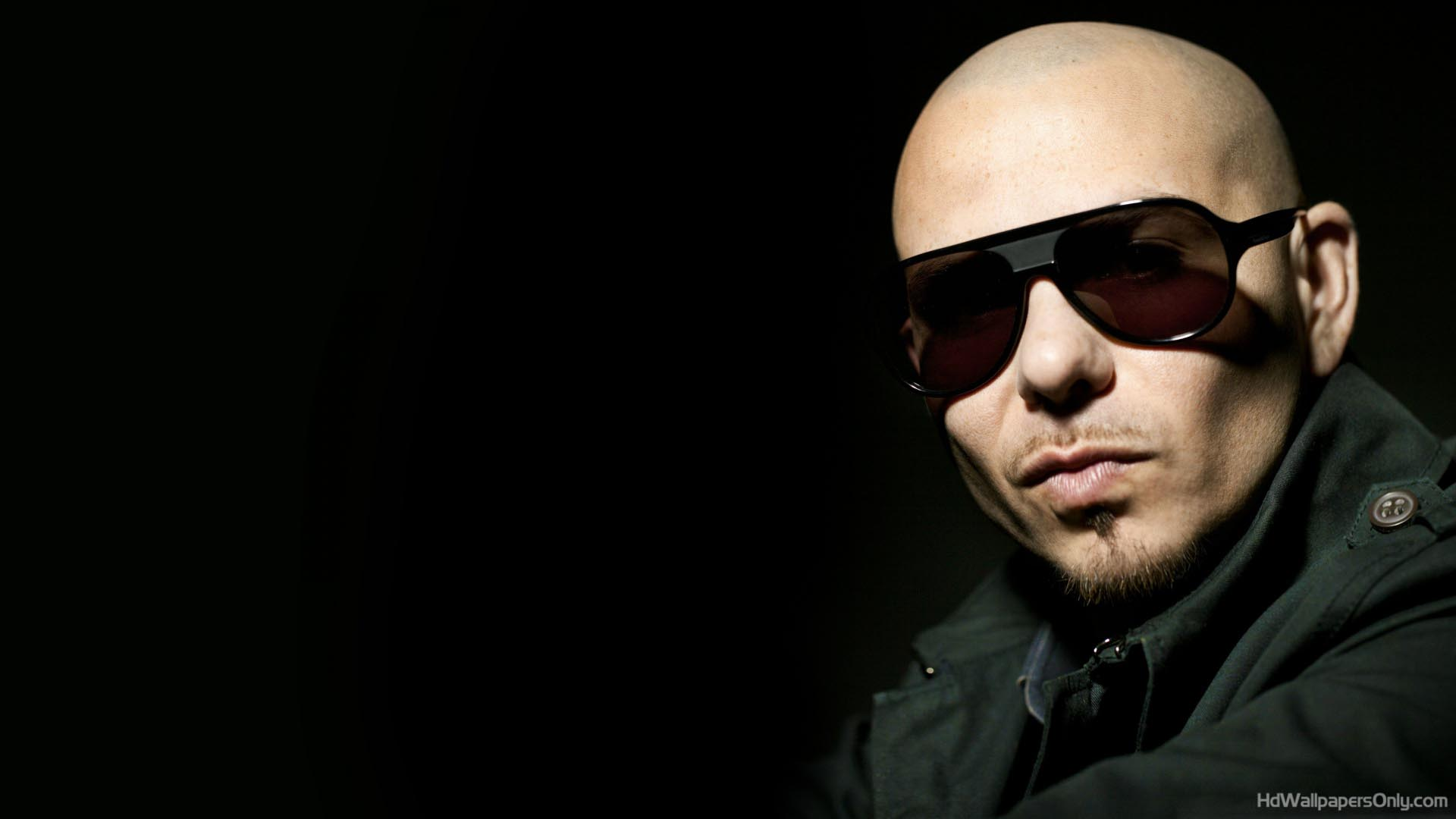 Free Pitbull Wallpapers Wallpaper Cave