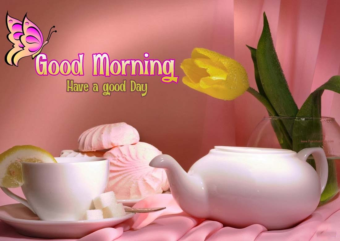 Wallpaper download good morning - New Good Morning Wallpaper 2014 Free Download Pak Fun Time