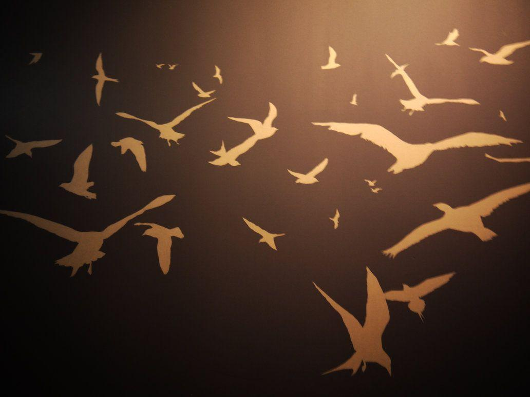 bird silhouette wallpapers wallpaper cave