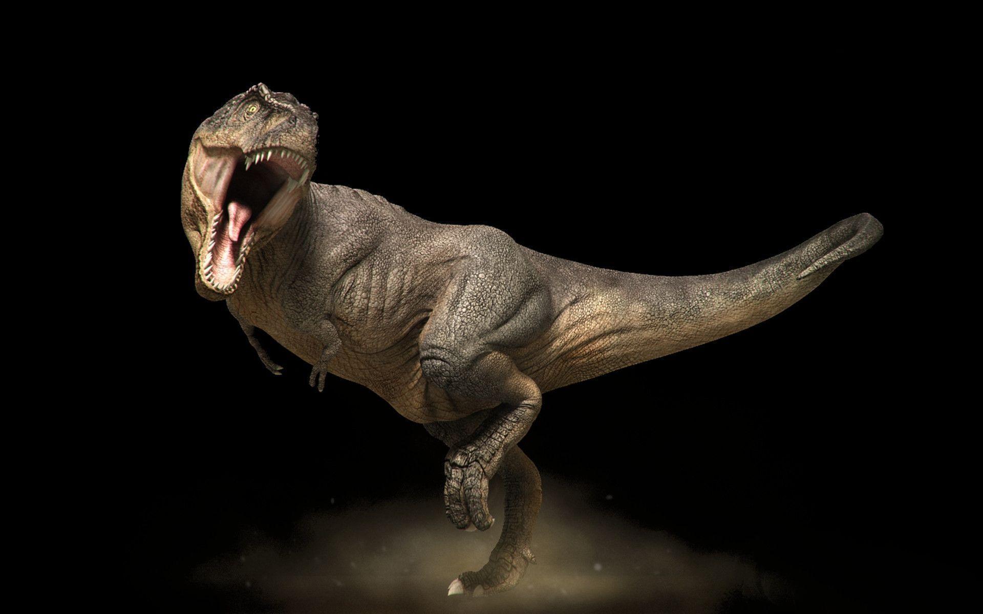 Wallpapers Tyrannosaurus Rex
