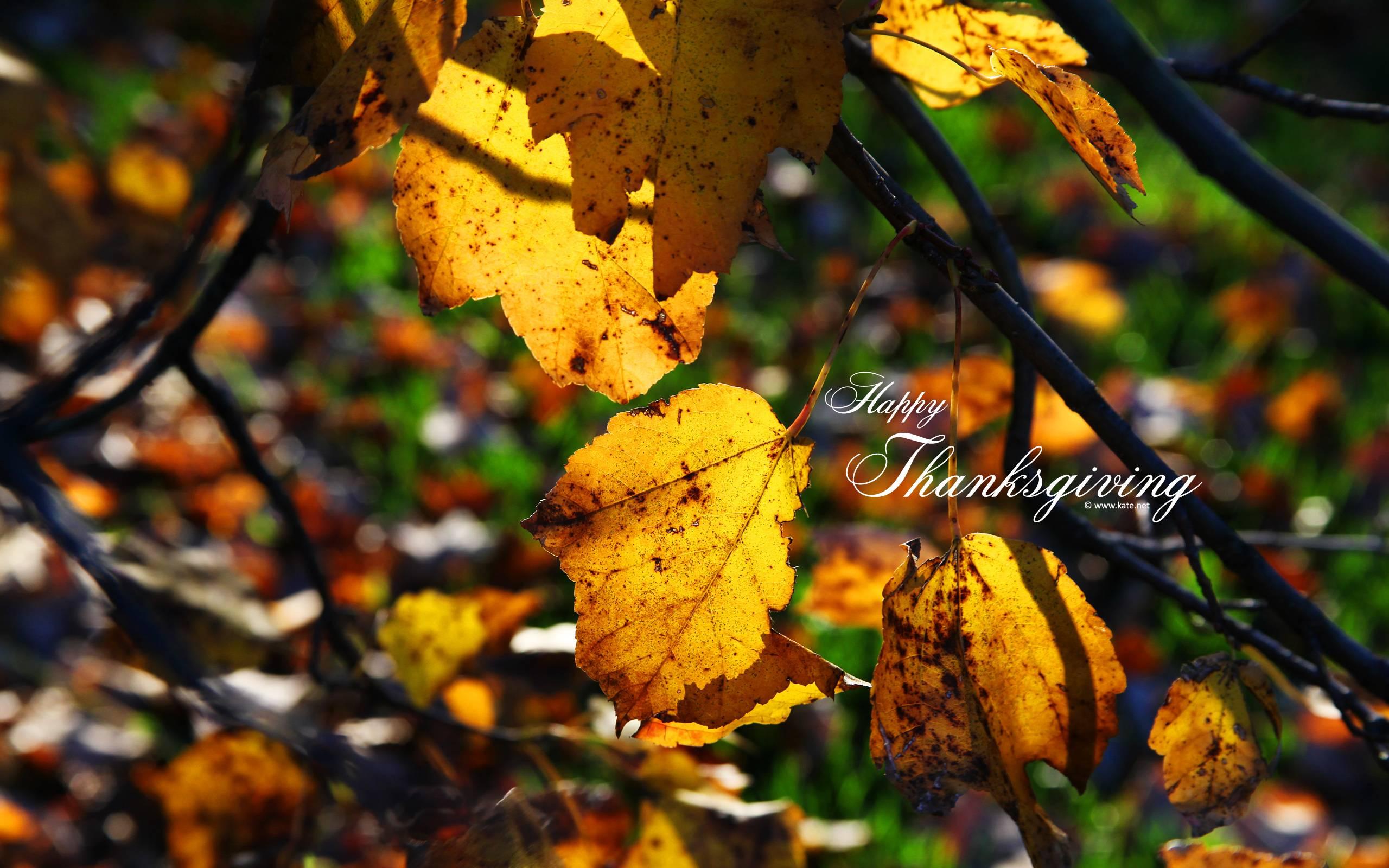 thanksgiving hd wallpaper widescreen 1920x1080 - photo #18