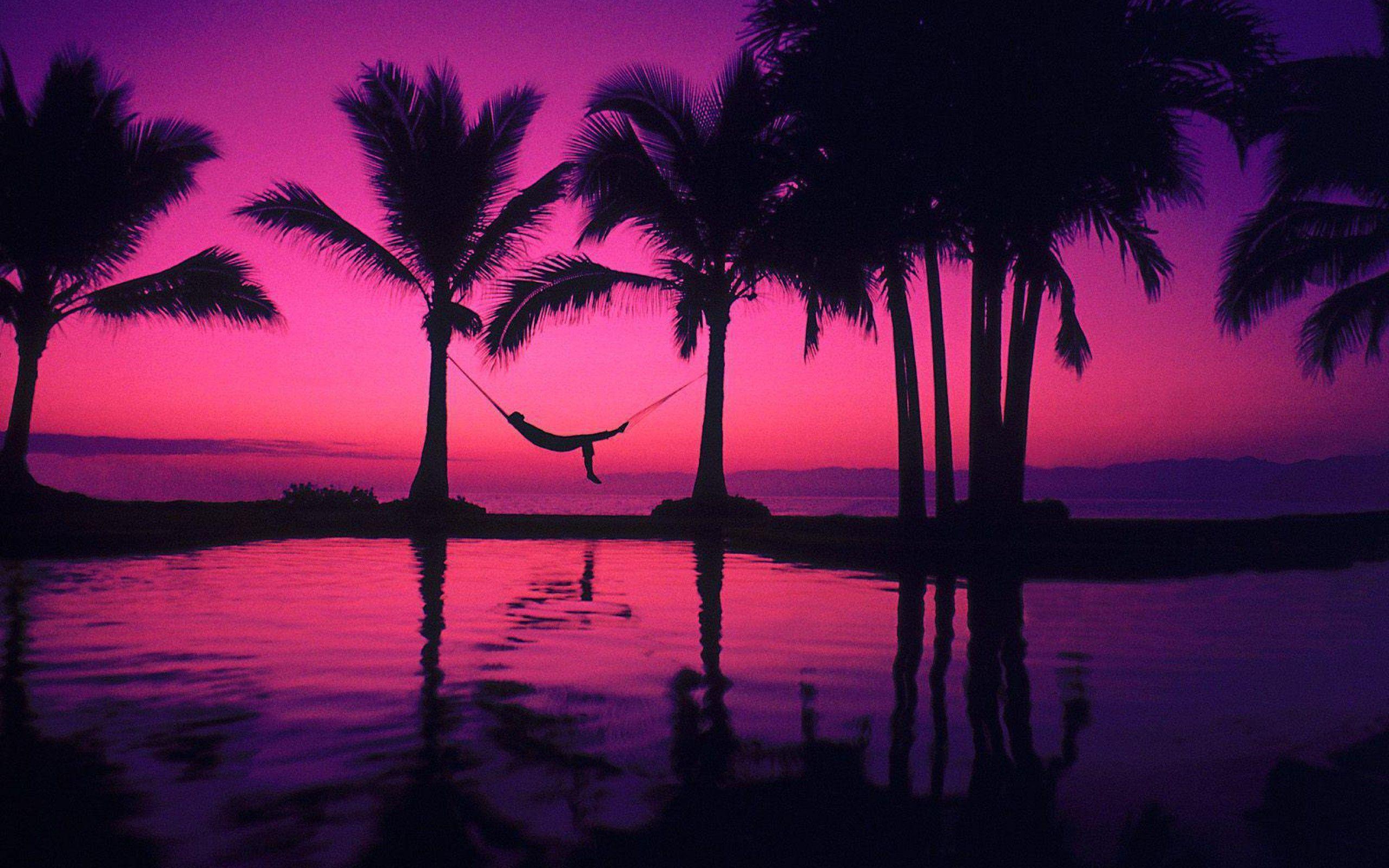 Pink Beach Sunset Wallpaper: Purple Sunset Wallpapers