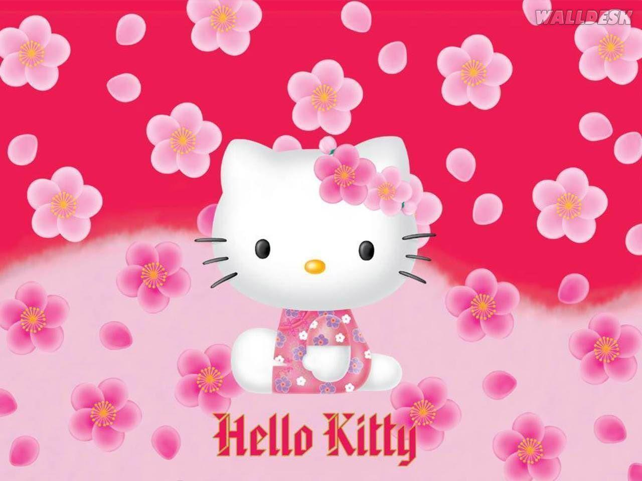 hello kitty free wallpapers wallpaper cave