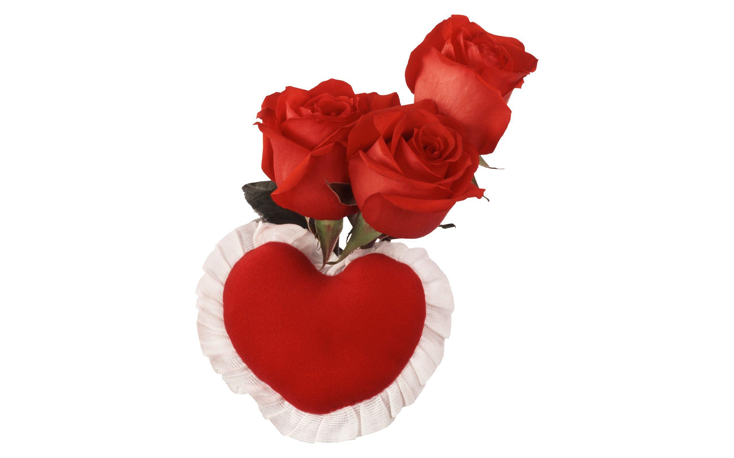 Flowers For Love Rose Flower Wallpaper