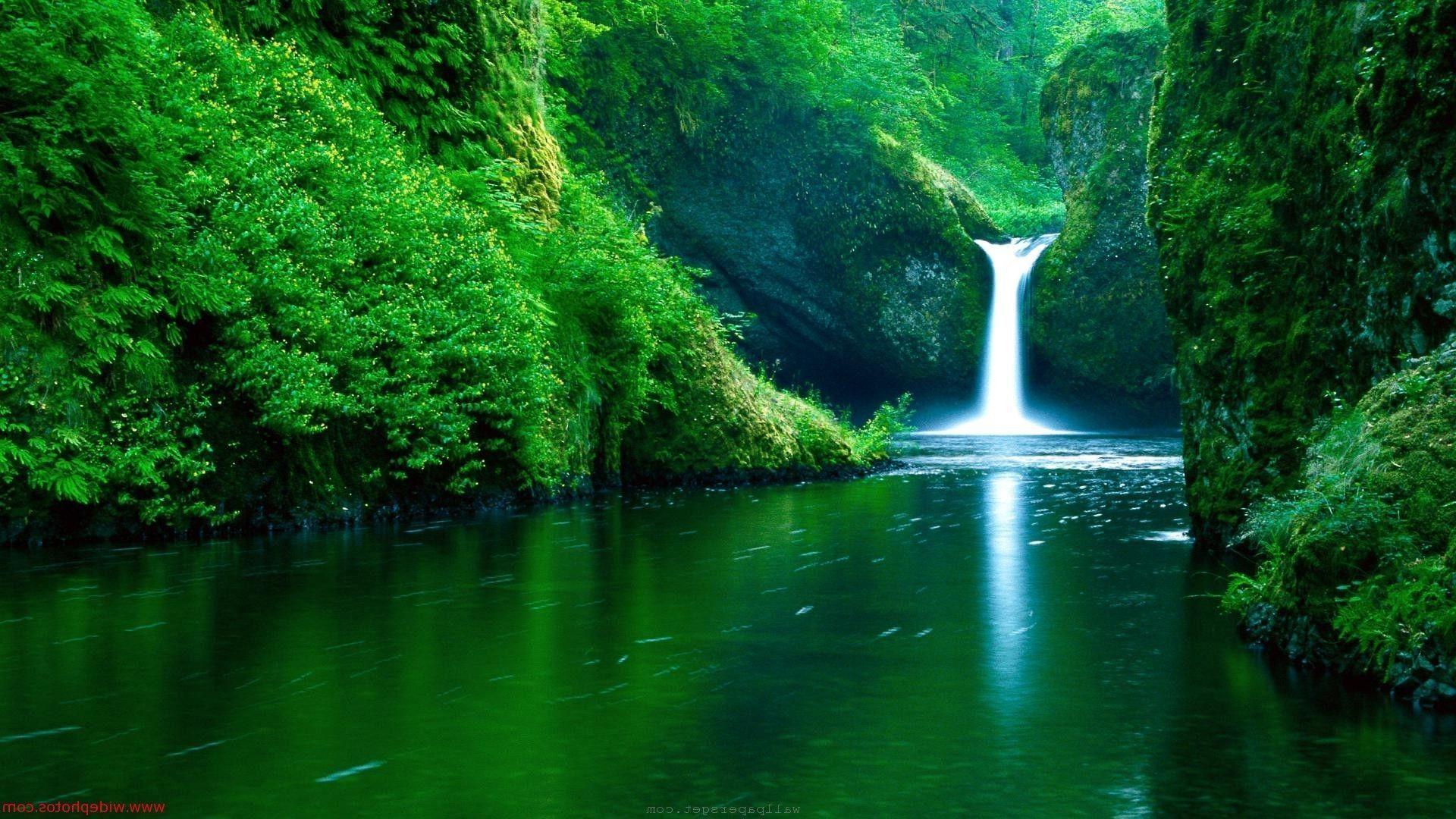 Hd wallpaper nature green - Beautiful Nature Wallpaper Wallpaperu Hdwallpaperin