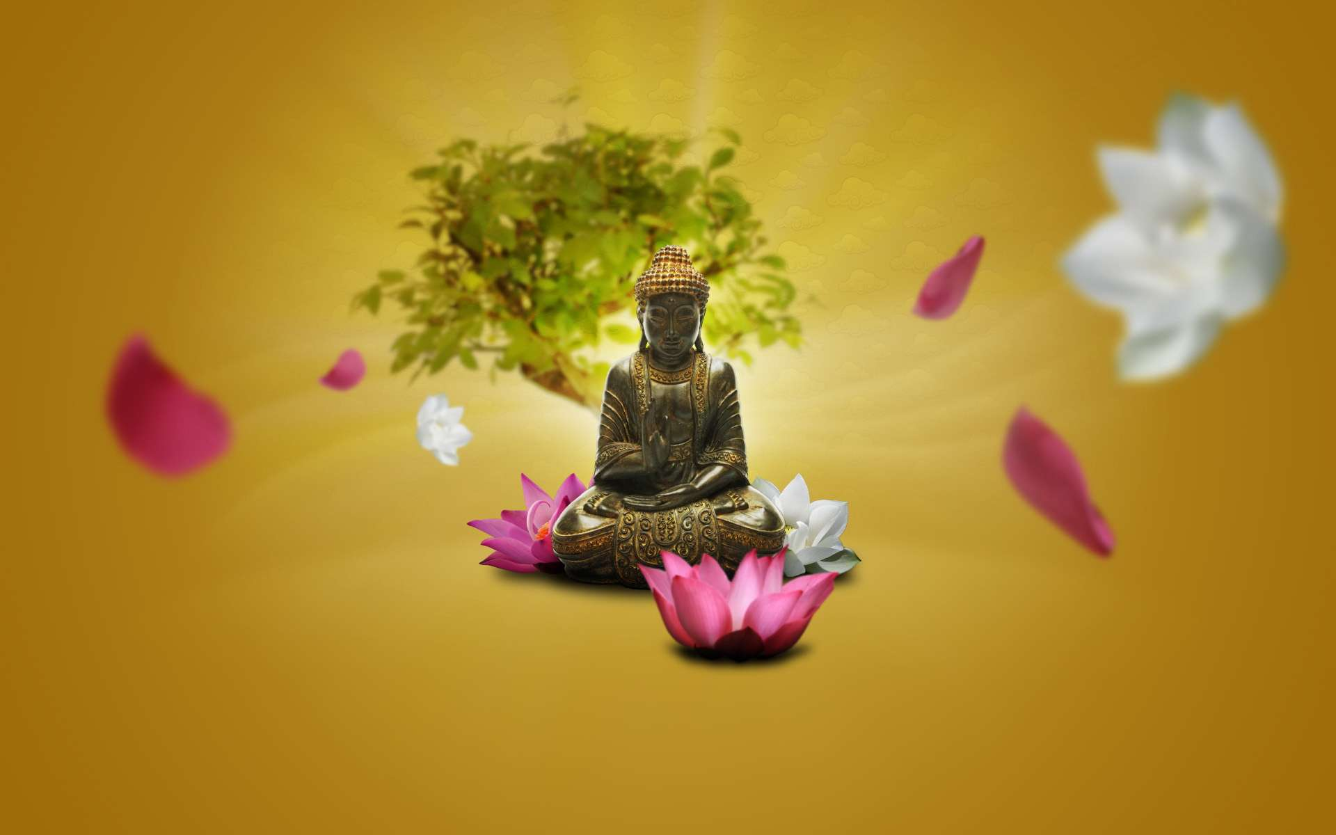 Buddhist backgrounds wallpaper cave - Wallpaper volwassen kamer zen ...