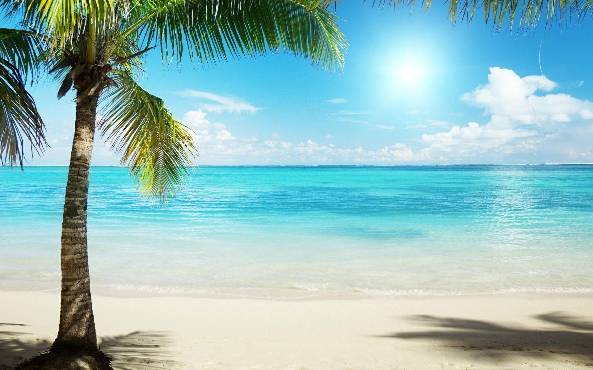 Tropical Beach Backgrounds