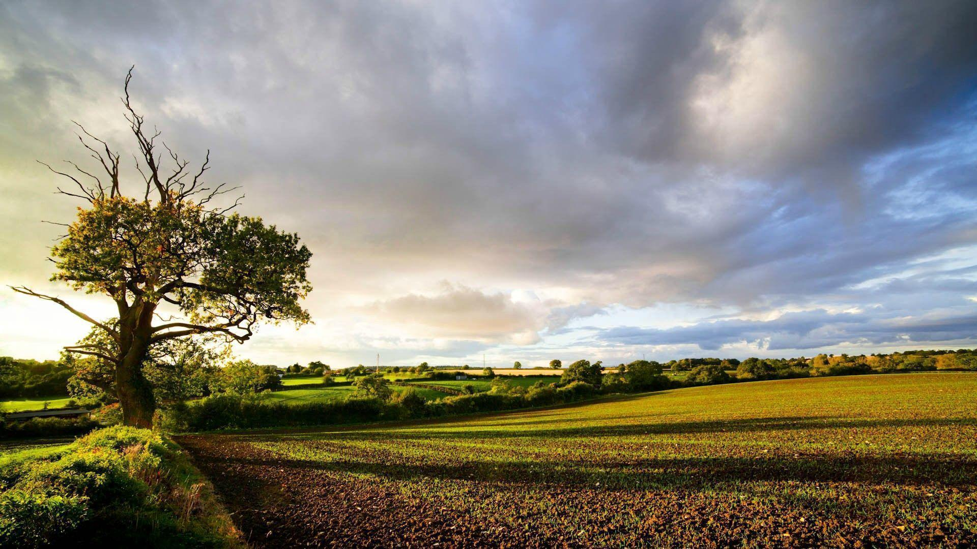 English Countryside Free Wallpapers