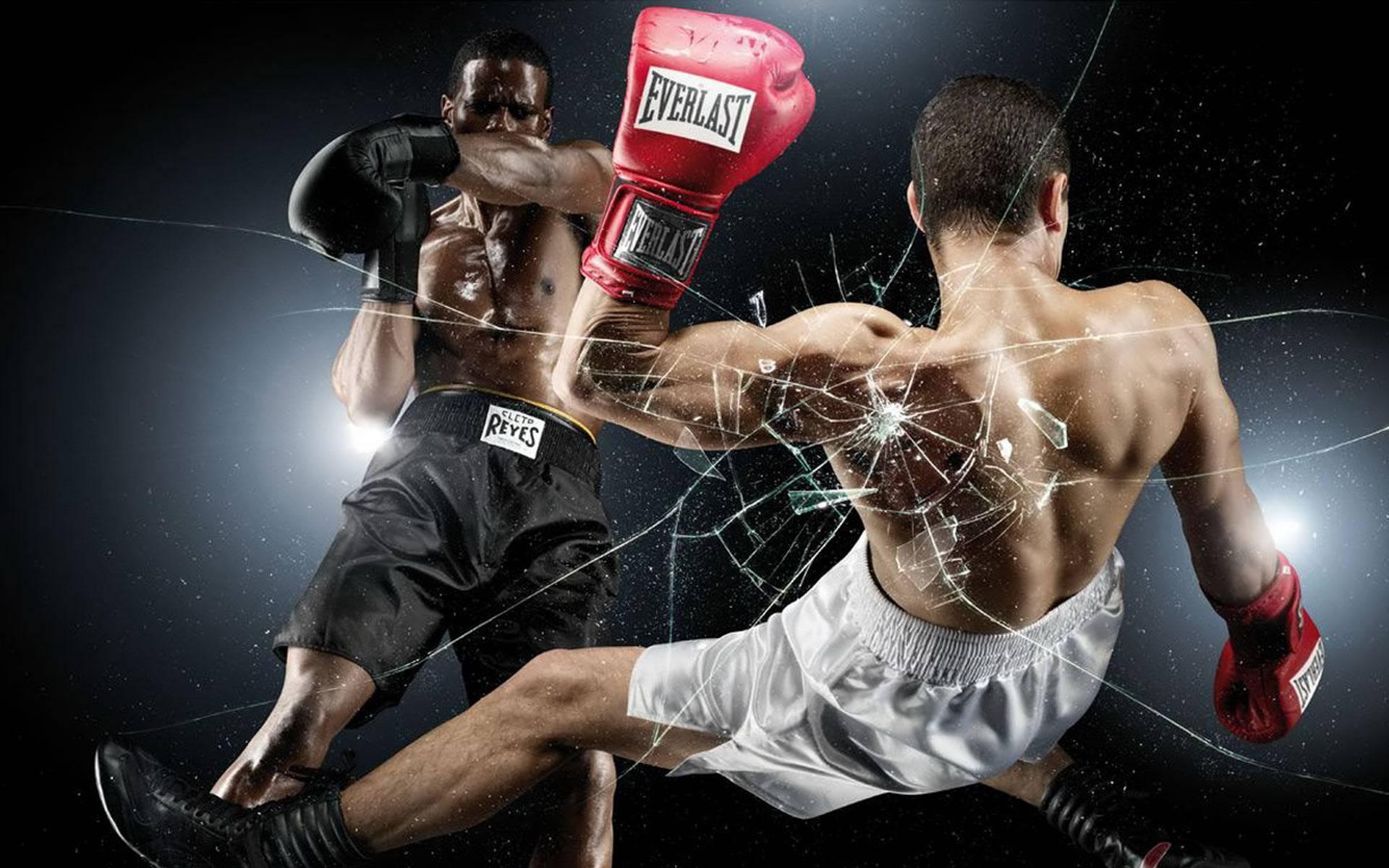 Kickboxing Wallpapers Wallpaper Cave