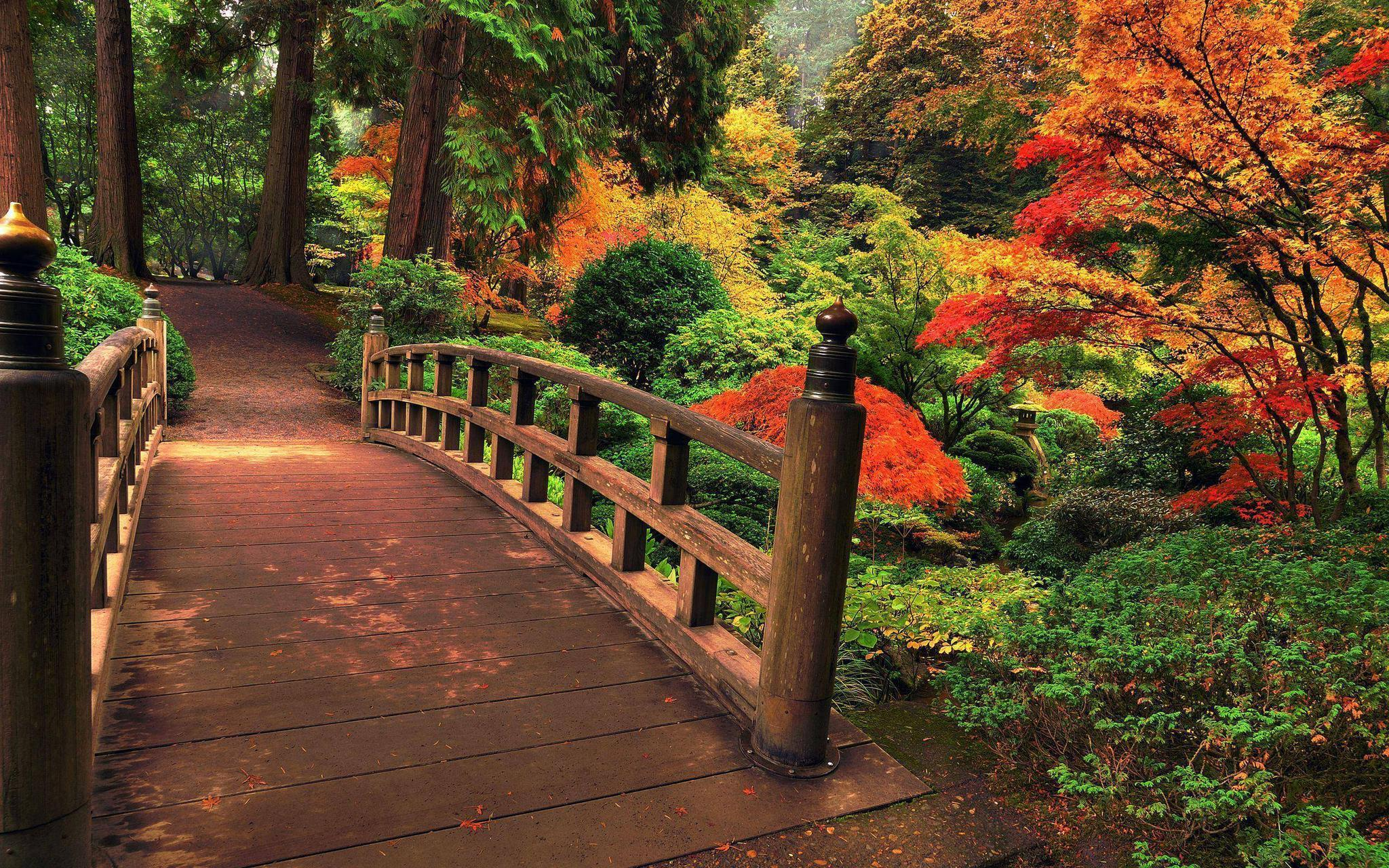 Japanese garden wallpapers wallpaper cave for Garden 50 designs to help you destress