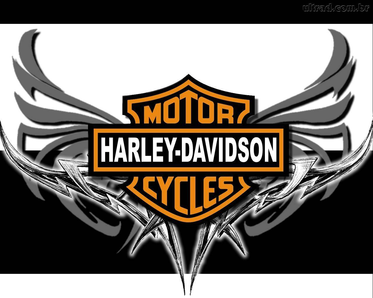 Logos For > Harley Davidson Logo With Flames Wallpapers