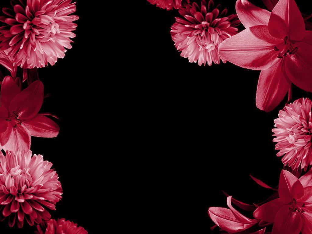 pink pretty backgrounds wallpaper cave