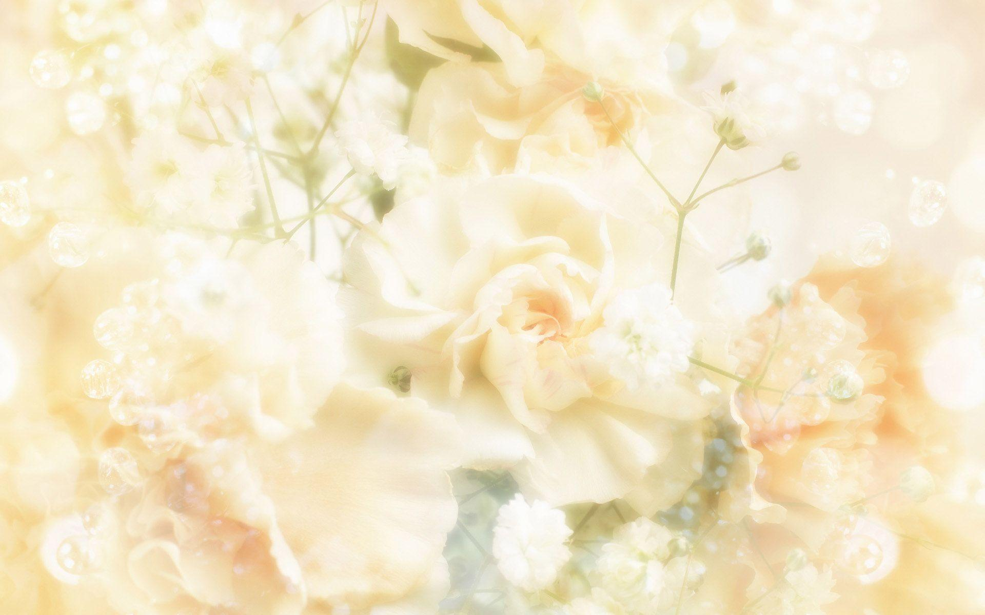 free wedding backgrounds image wallpaper cave