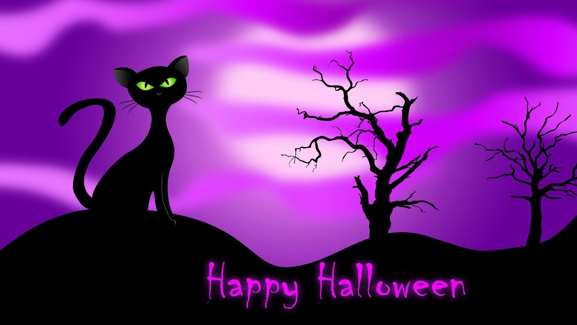 Happy Halloween Cat Desktop Background | Desktop Backgrounds HQ