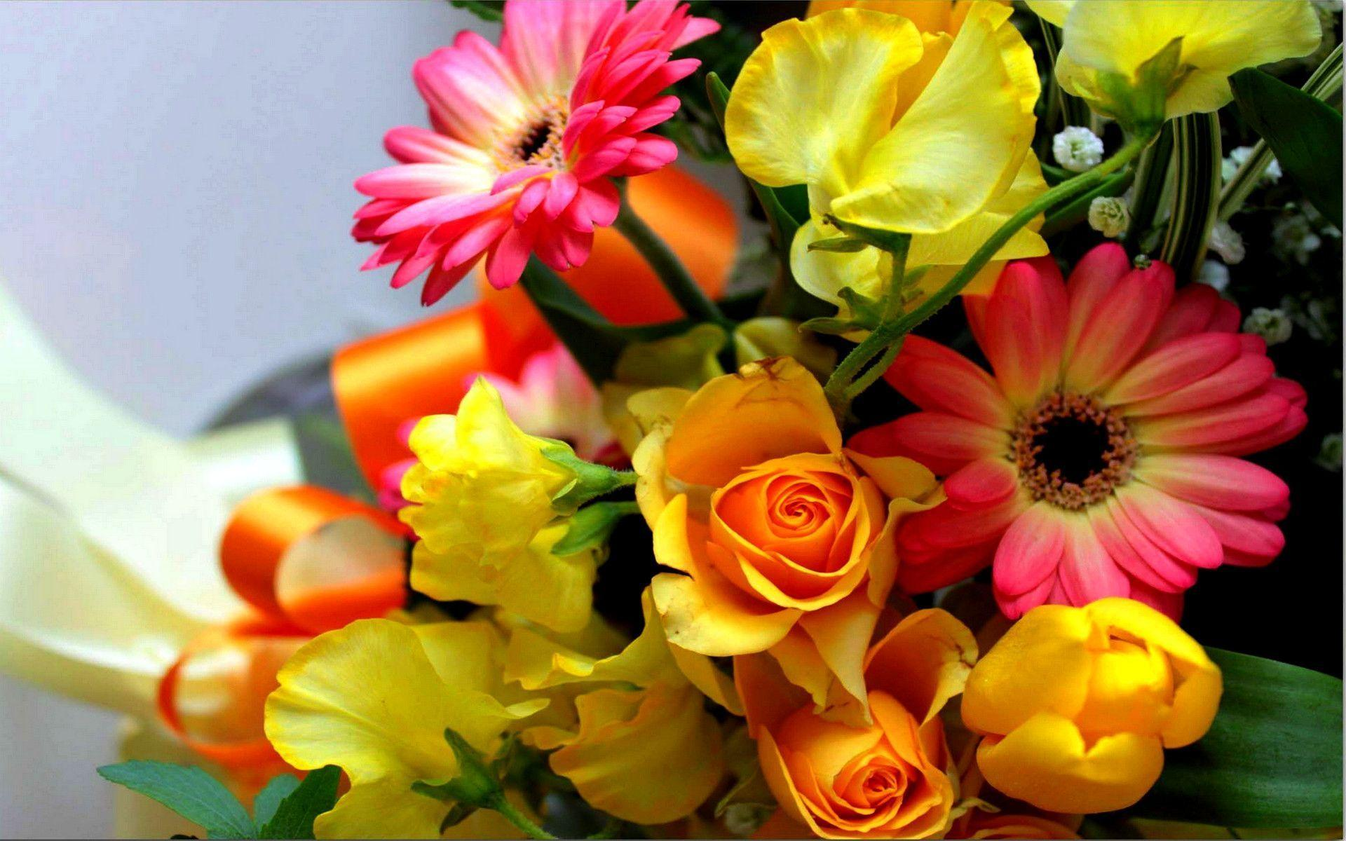 Hd Flower Bouquet Wallpapers Download Fr 1920x1200PX ~ Wallpapers