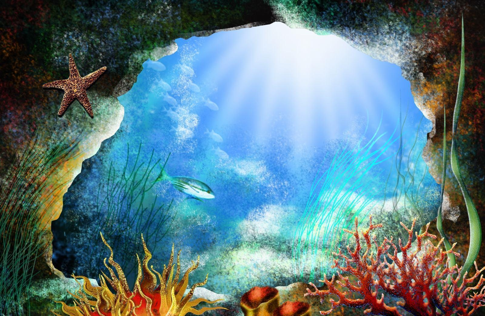 Sea life wallpapers wallpaper cave for Wall scenes