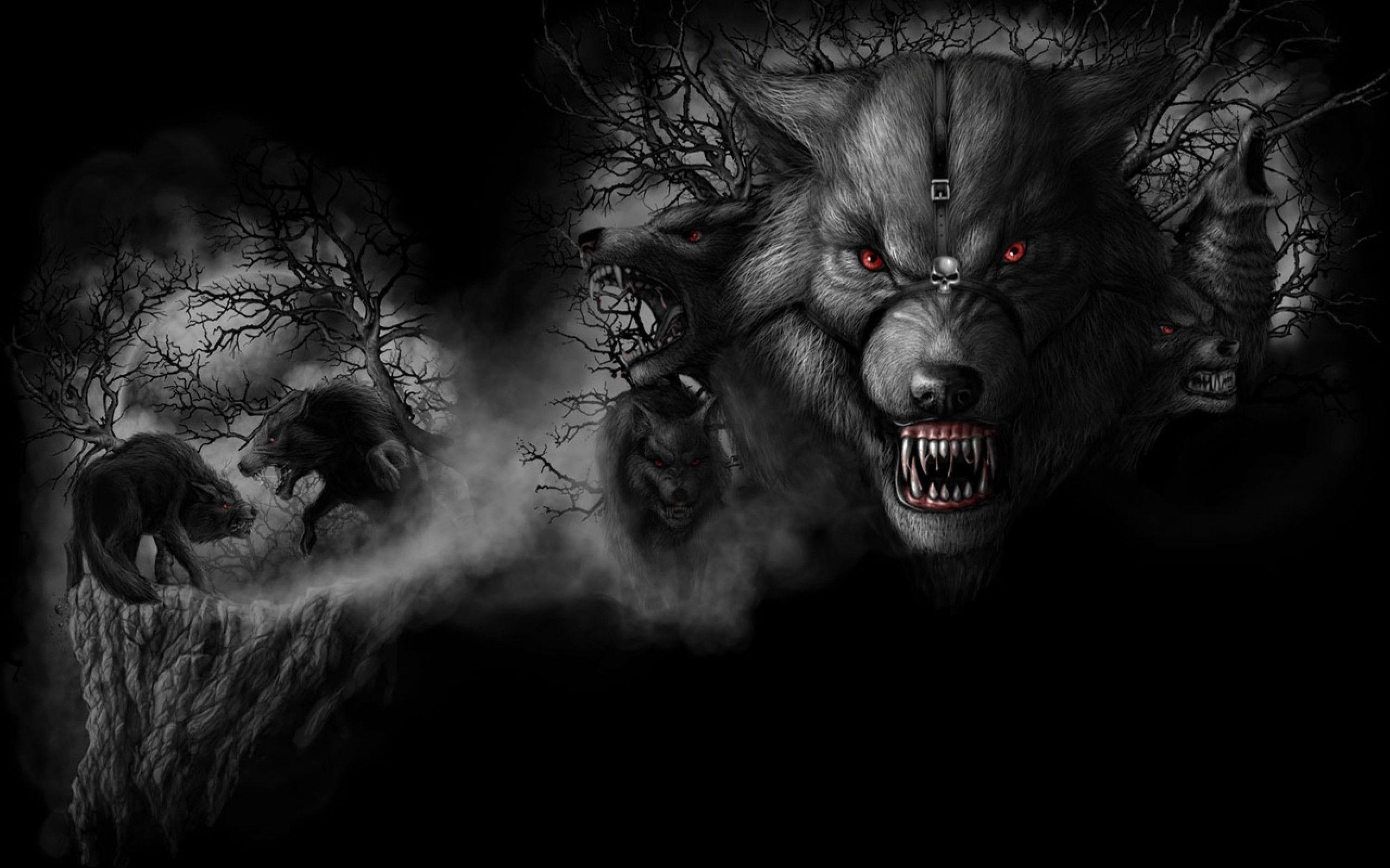 Dark Wolf Full HD Wallpaper