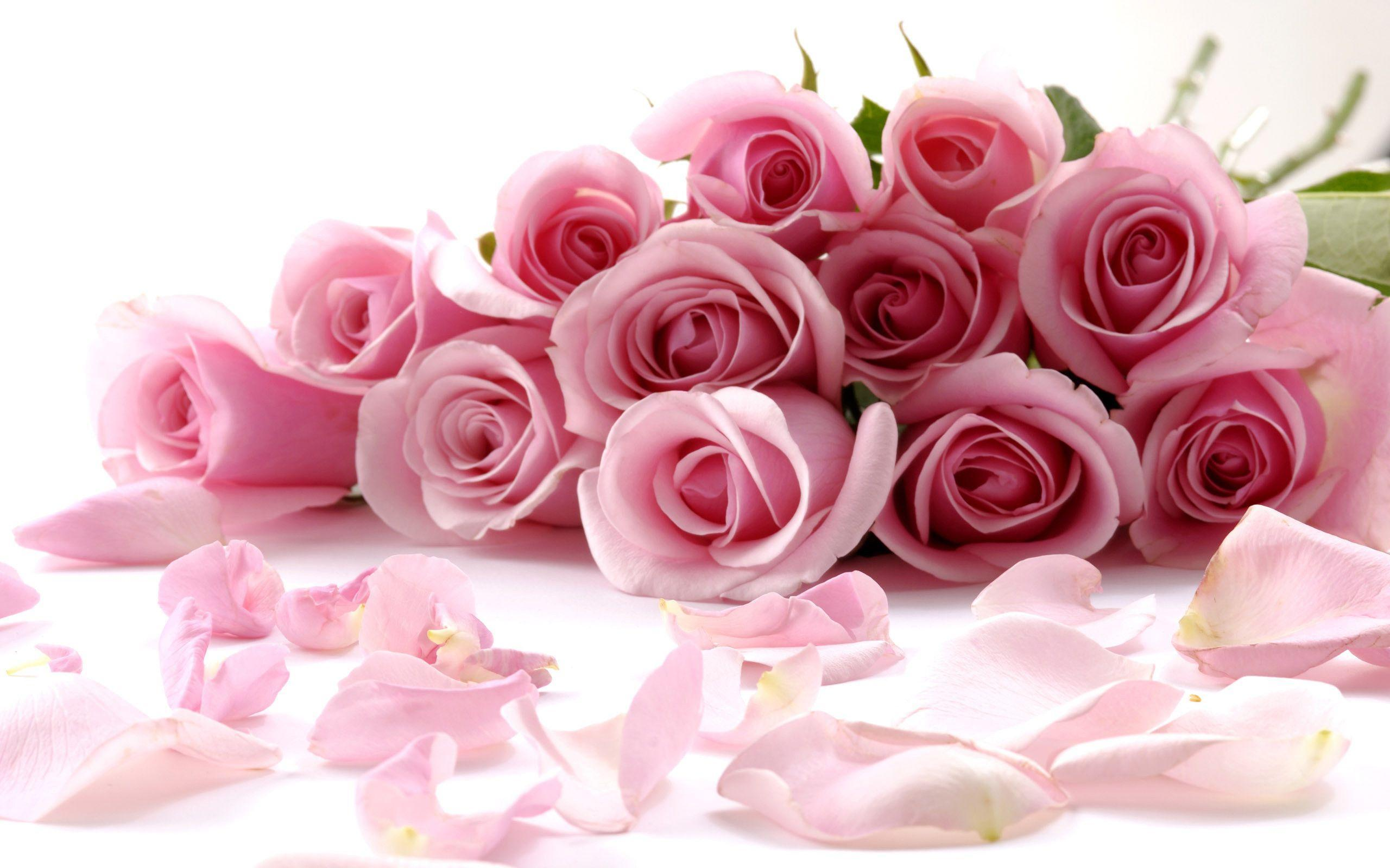 Pix For Light Pink Flowers Wallpaper