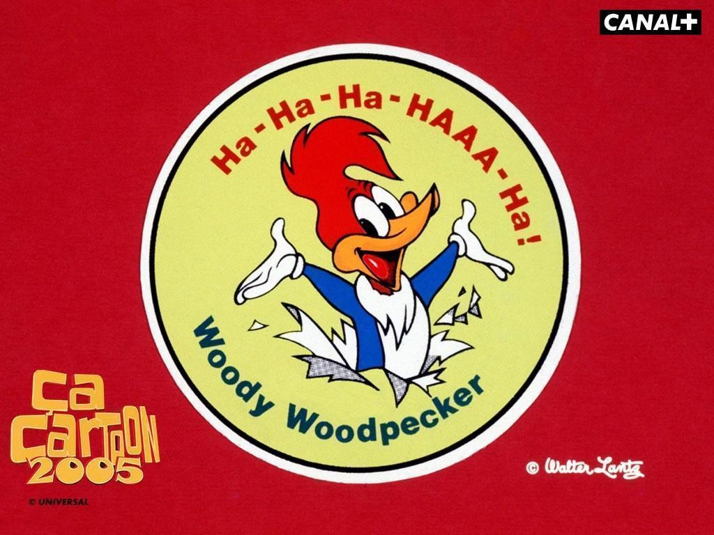 Image For > Woody Woodpecker Wallpapers